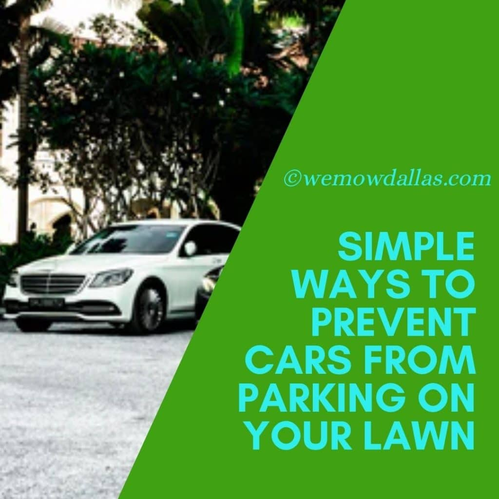 Simple Ways to Prevent Cars from Parking on Your Lawn