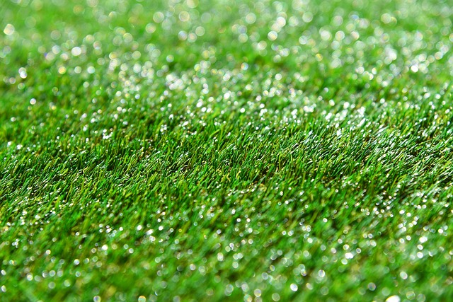 how to patch lawn with turf
