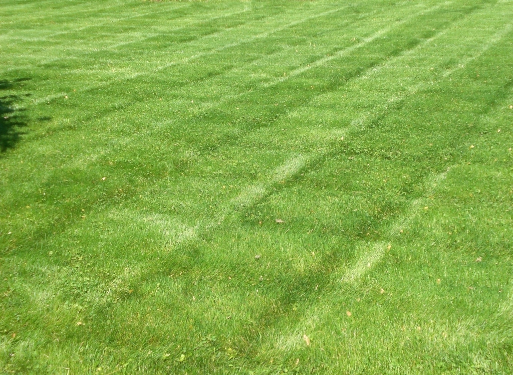 How to Make Stripes in Lawn